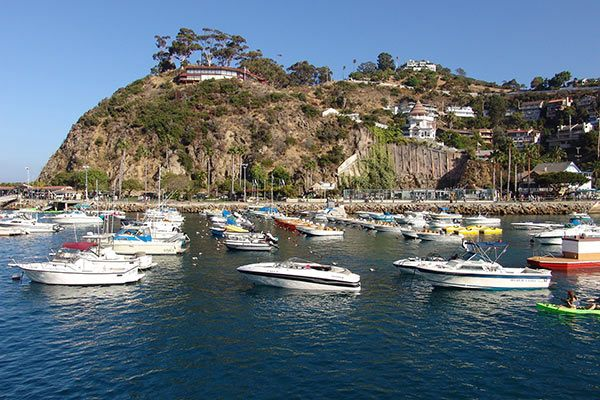 Baja Mexico Cruises Baja Mexico Cruise Vacation Deals Cruisedirect