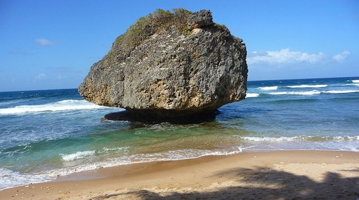 Barbagos Bathsheba