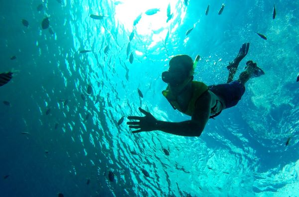 Royal Caribbean Cruises - Snorkeling In Cozumel (Select Itineraries)